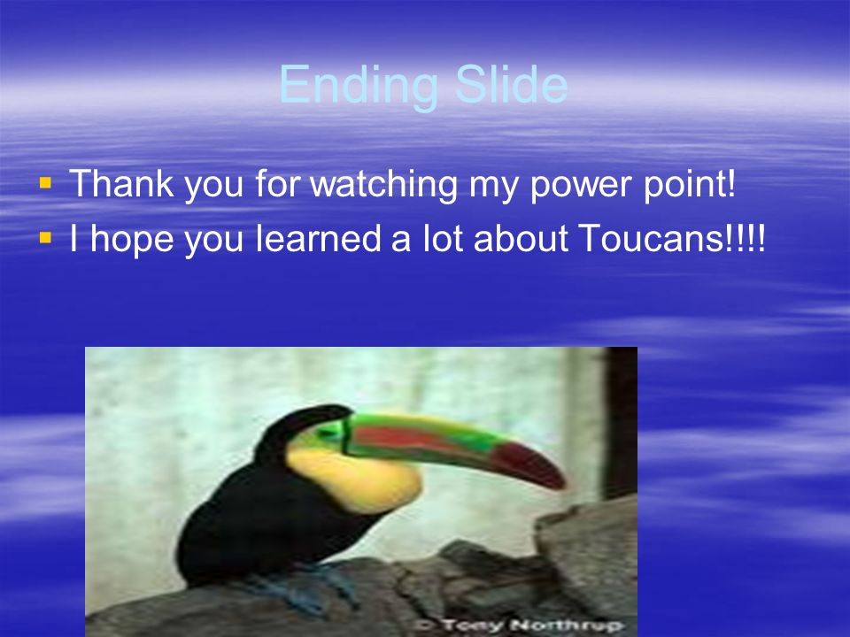Ending Slide Thank you for watching my power point!