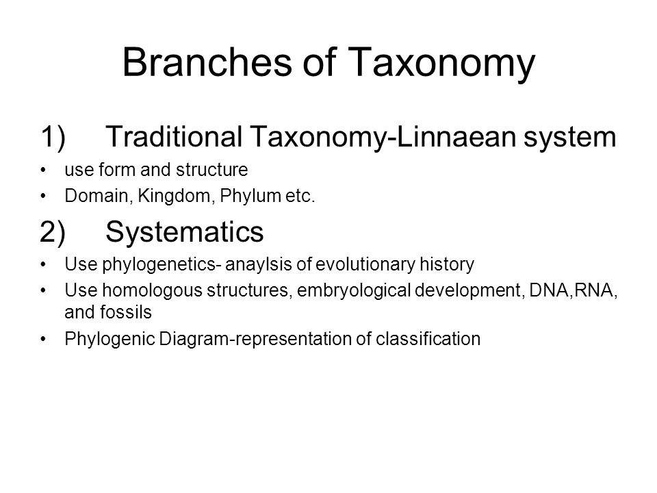 Branches of Taxonomy 1) Traditional Taxonomy-Linnaean system