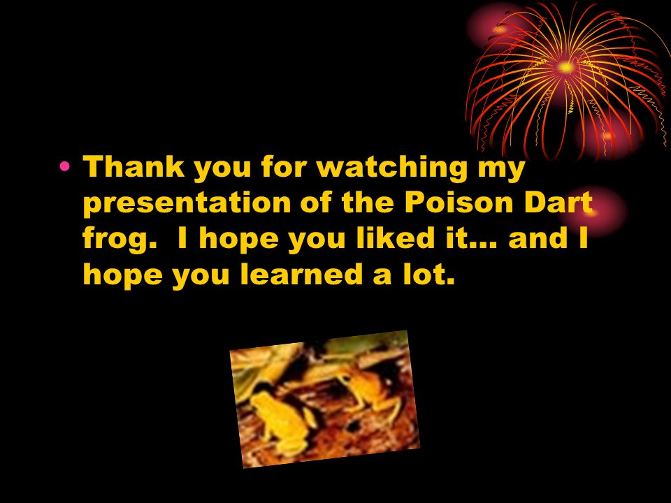 Thank you for watching my presentation of the Poison Dart frog