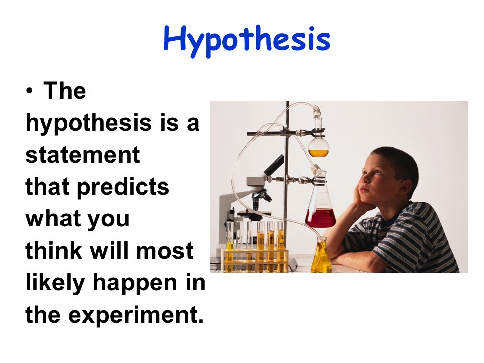 Hypothesis The hypothesis is a statement that predicts what you