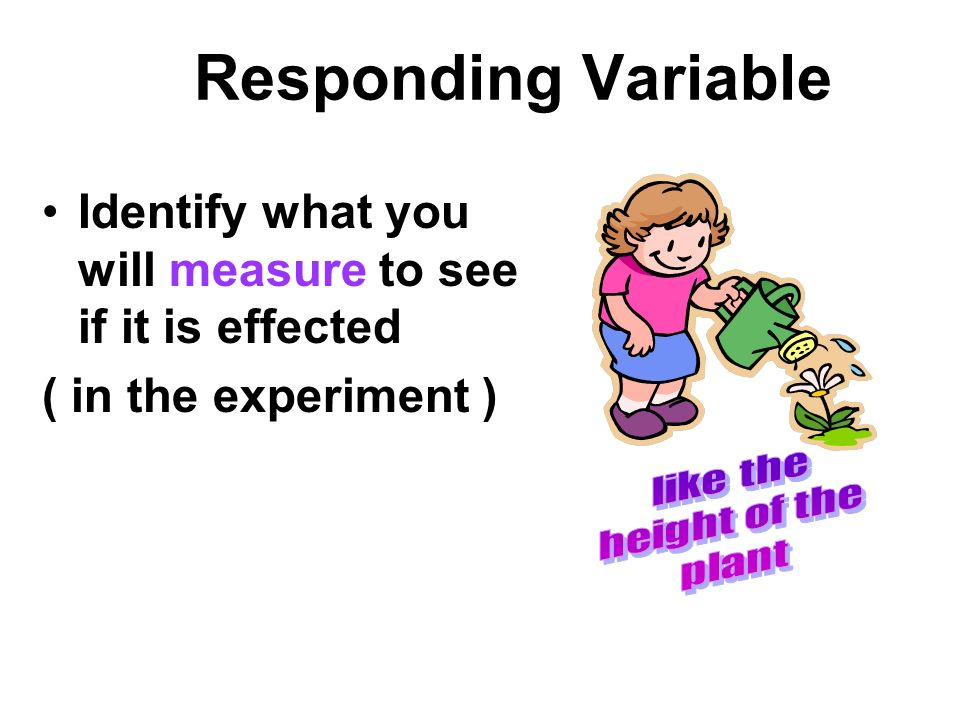 Responding Variable Identify what you will measure to see if it is effected. ( in the experiment )