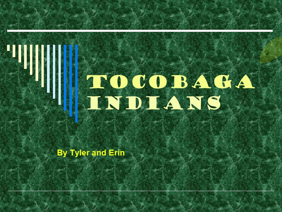 Tocobaga Indians By Tyler and Erin