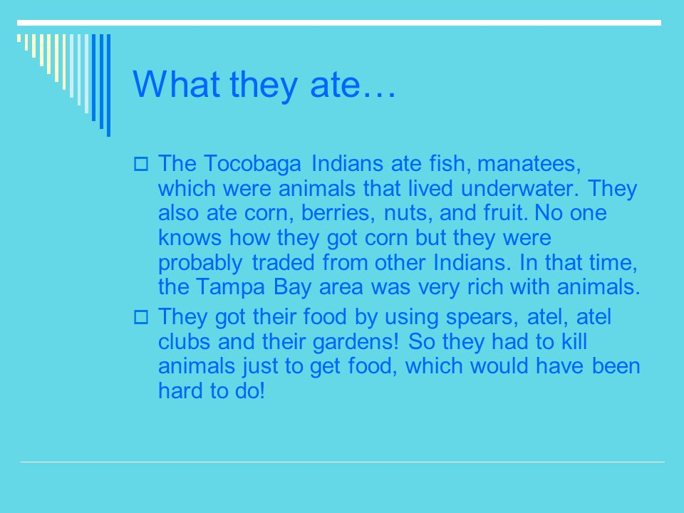 What they ate…