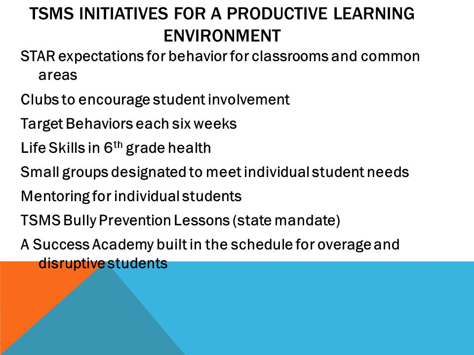 TSMS Initiatives for a Productive Learning Environment