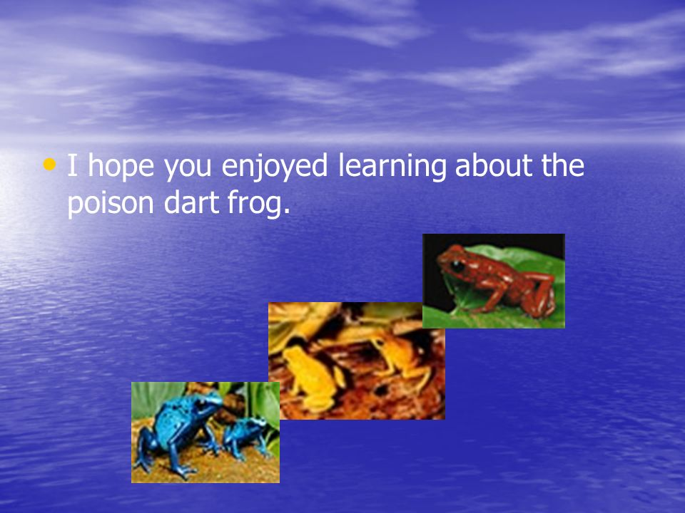 I hope you enjoyed learning about the poison dart frog.