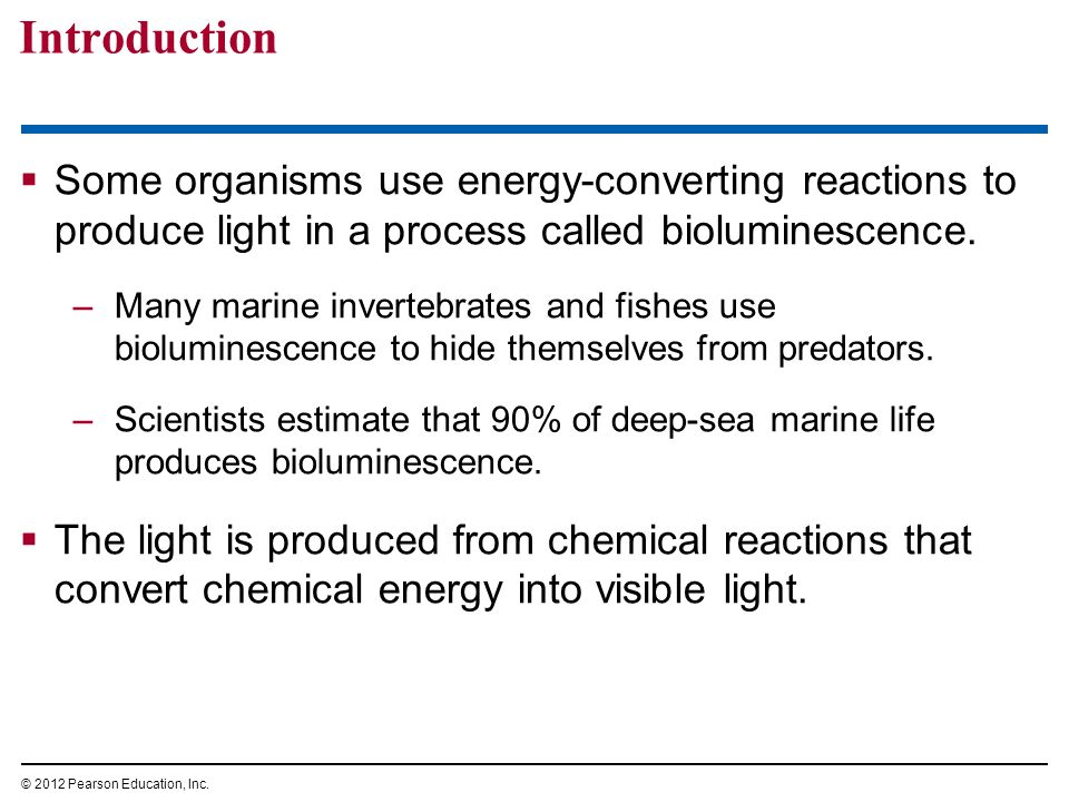 the importance of the use of bioluminescence in deep sea and marine life Bioluminescence has mystified scientists throughout history, and many aspects of this biological phenomenon are still unknown most bioluminescent species are found in the deep sea, although.