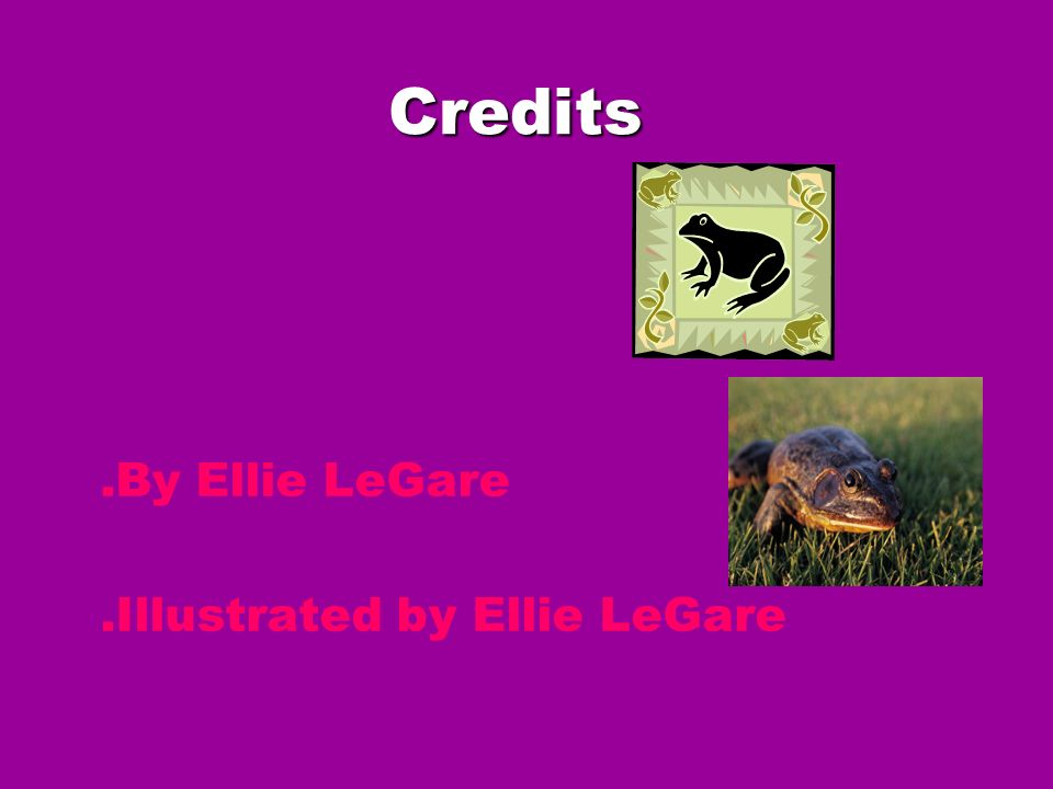 Credits .By Ellie LeGare .Illustrated by Ellie LeGare