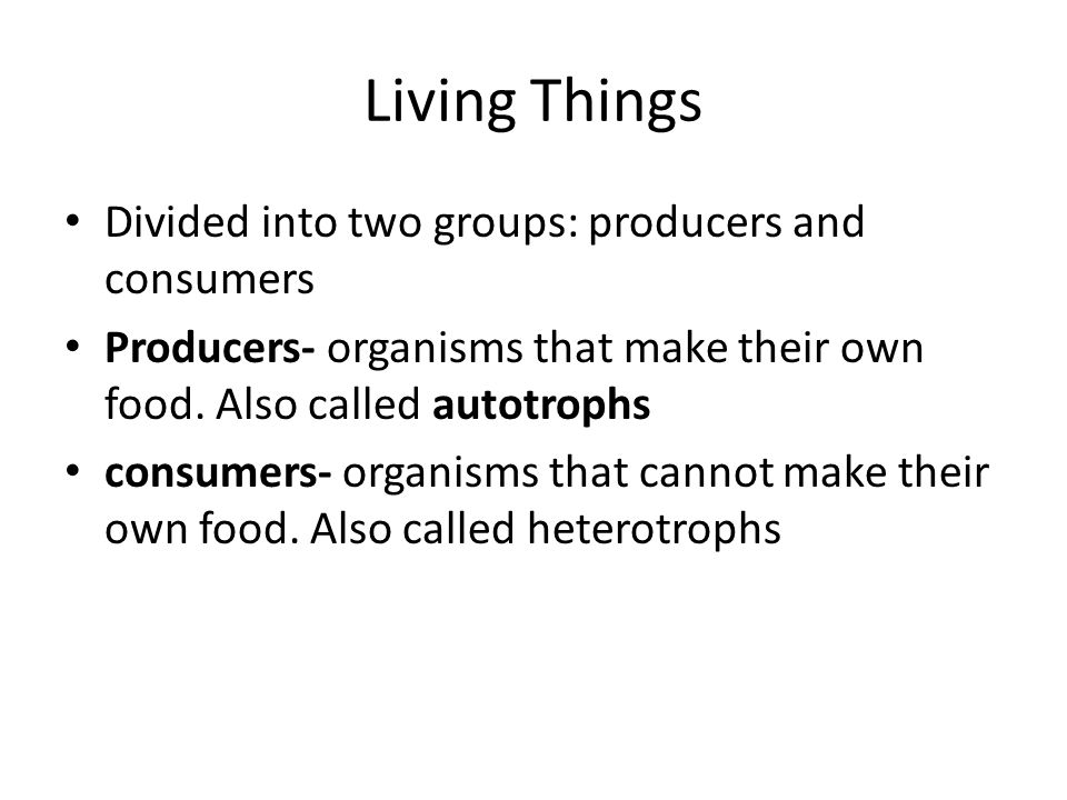 Living Things Divided into two groups: producers and consumers