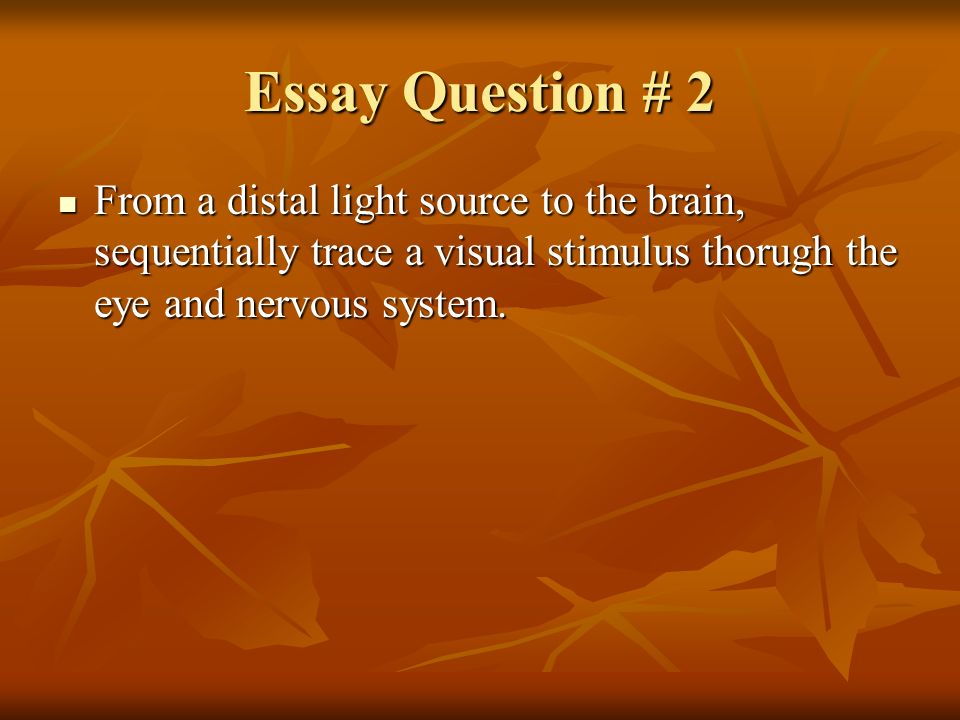essay questions on endocrine system Hormones, body fluids, chemicals - nervous system and the endocrine system, questions and answers.
