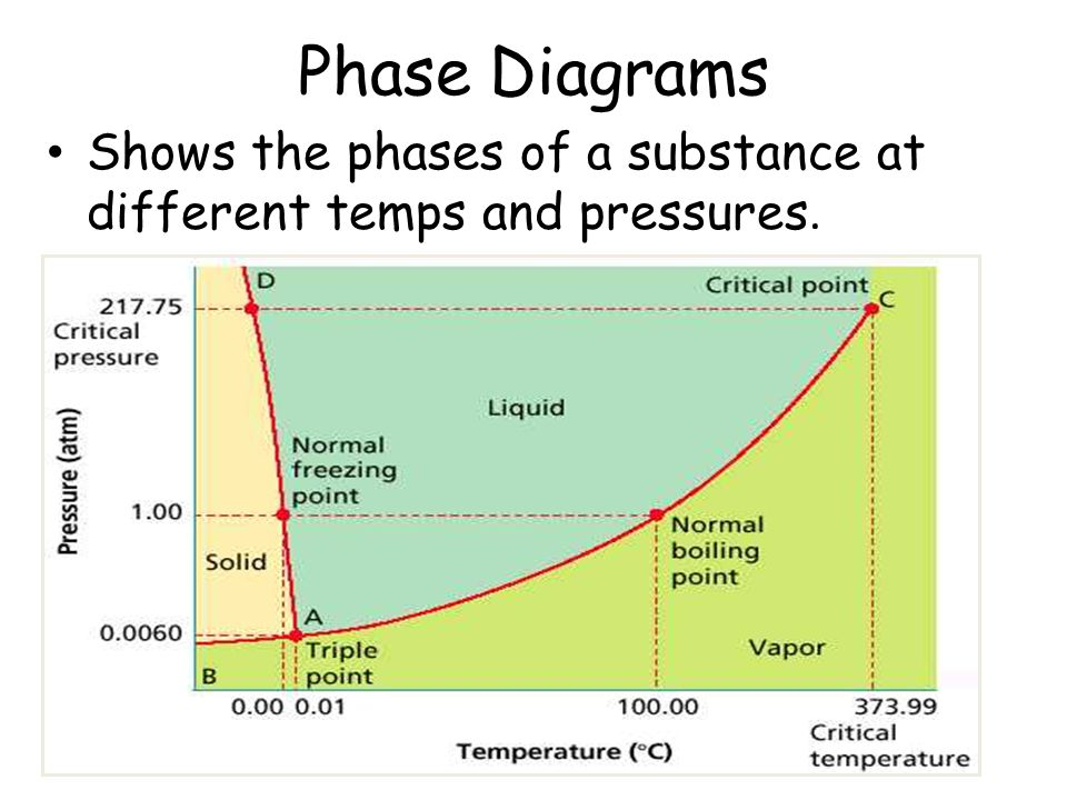 Phase Diagrams Shows the phases of a substance at different temps and pressures.