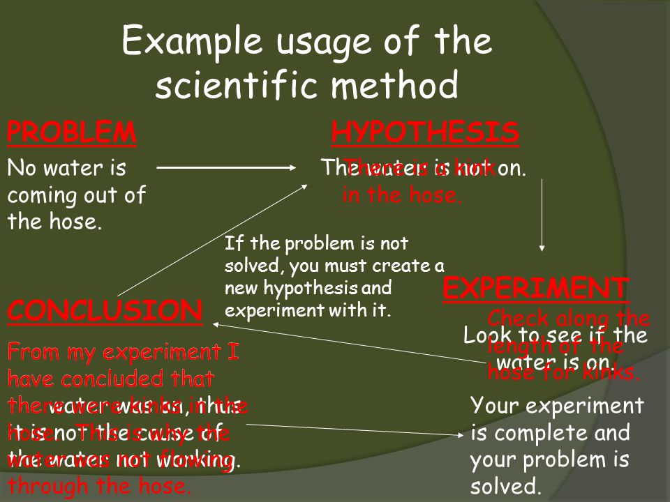 Example usage of the scientific method