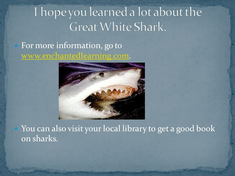 I hope you learned a lot about the Great White Shark.