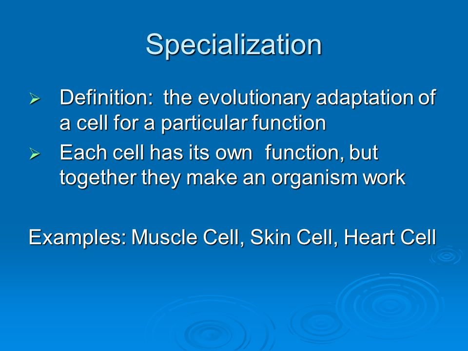 Specialization Definition: the evolutionary adaptation of a cell for a particular function.