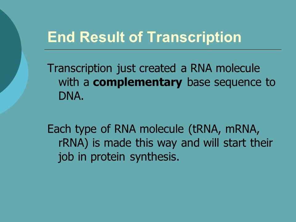End Result of Transcription