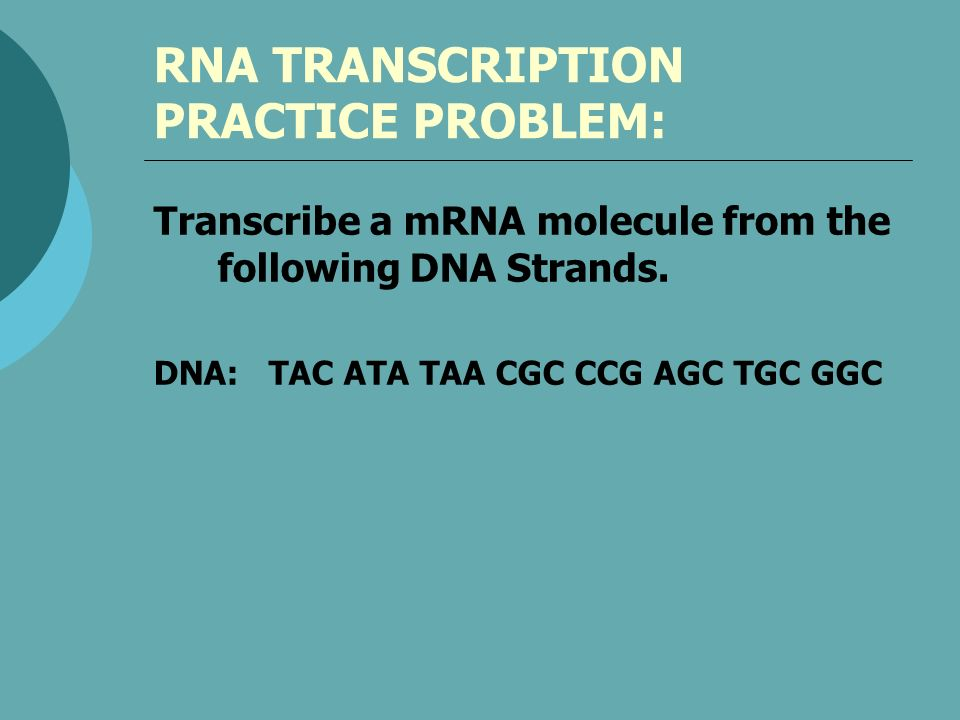 RNA TRANSCRIPTION PRACTICE PROBLEM: