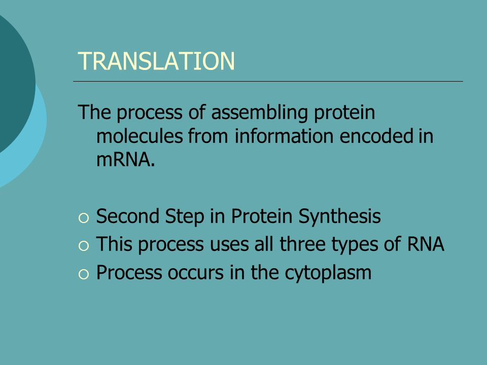 TRANSLATION The process of assembling protein molecules from information encoded in mRNA. Second Step in Protein Synthesis.
