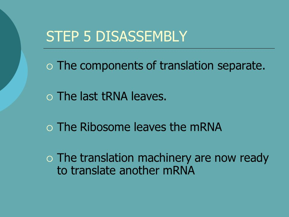 STEP 5 DISASSEMBLY The components of translation separate.