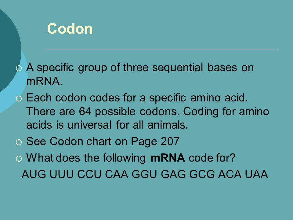 Codon A specific group of three sequential bases on mRNA.