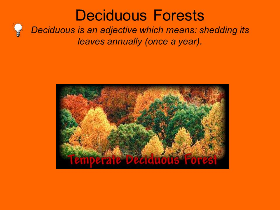 Deciduous Forests Deciduous is an adjective which means: shedding its leaves annually (once a year).