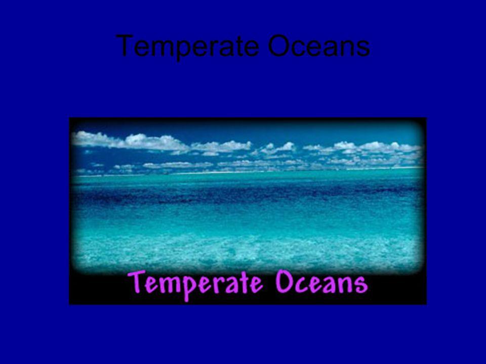 Temperate Oceans