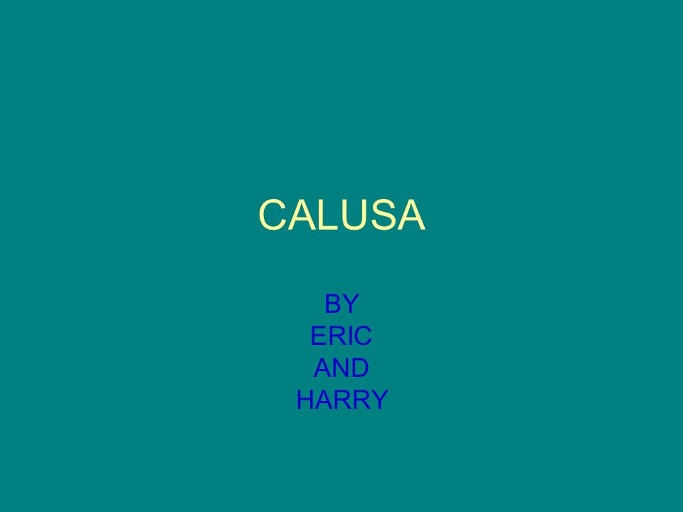 CALUSA BY ERIC AND HARRY