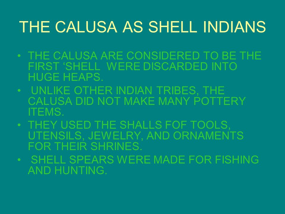 THE CALUSA AS SHELL INDIANS