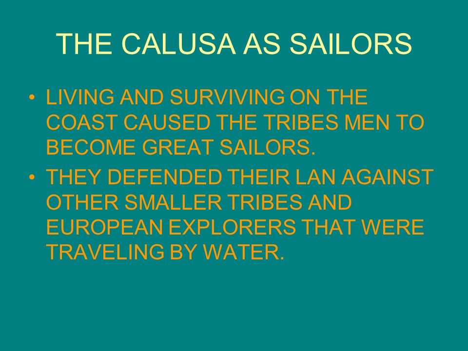 THE CALUSA AS SAILORS LIVING AND SURVIVING ON THE COAST CAUSED THE TRIBES MEN TO BECOME GREAT SAILORS.