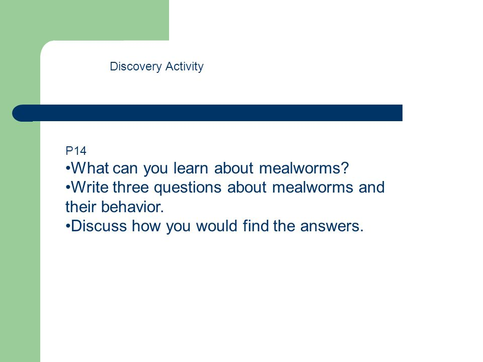 What can you learn about mealworms