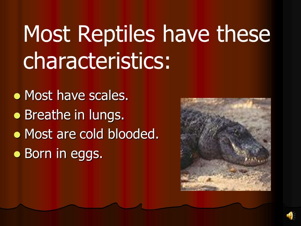 Most Reptiles have these characteristics:
