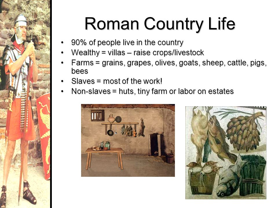 Roman Country Life 90% of people live in the country