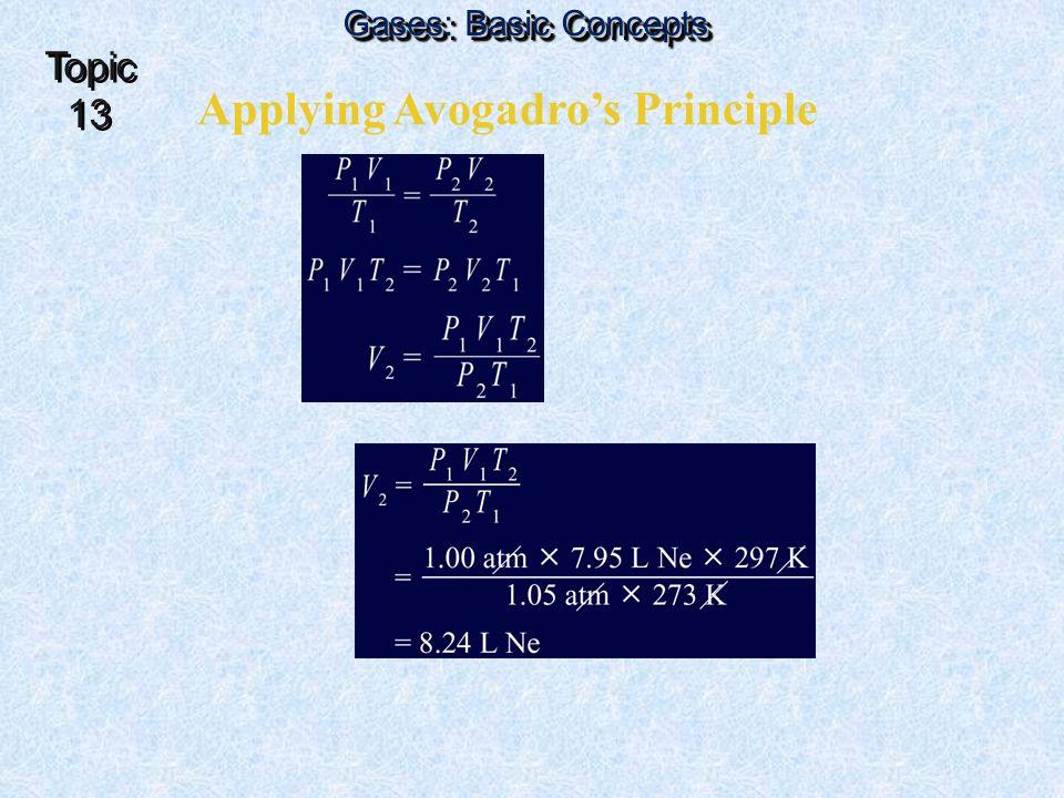 Applying Avogadro's Principle