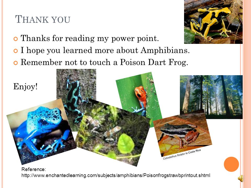 Thank you Thanks for reading my power point.