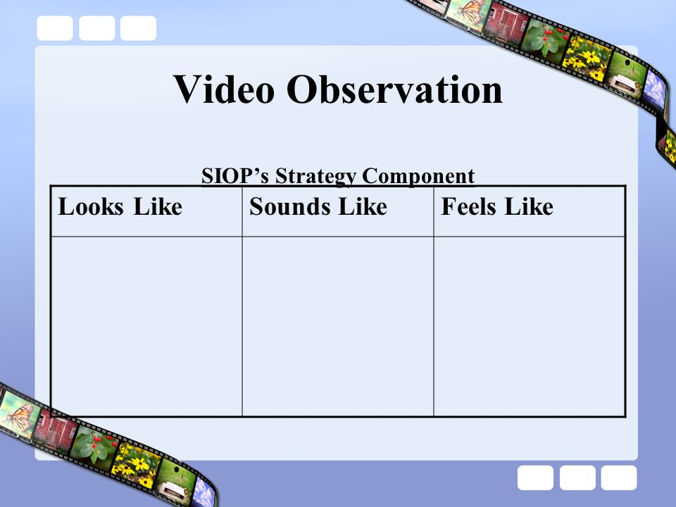 SIOP's Strategy Component