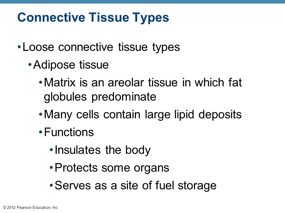 3 cells and tissues ppt download