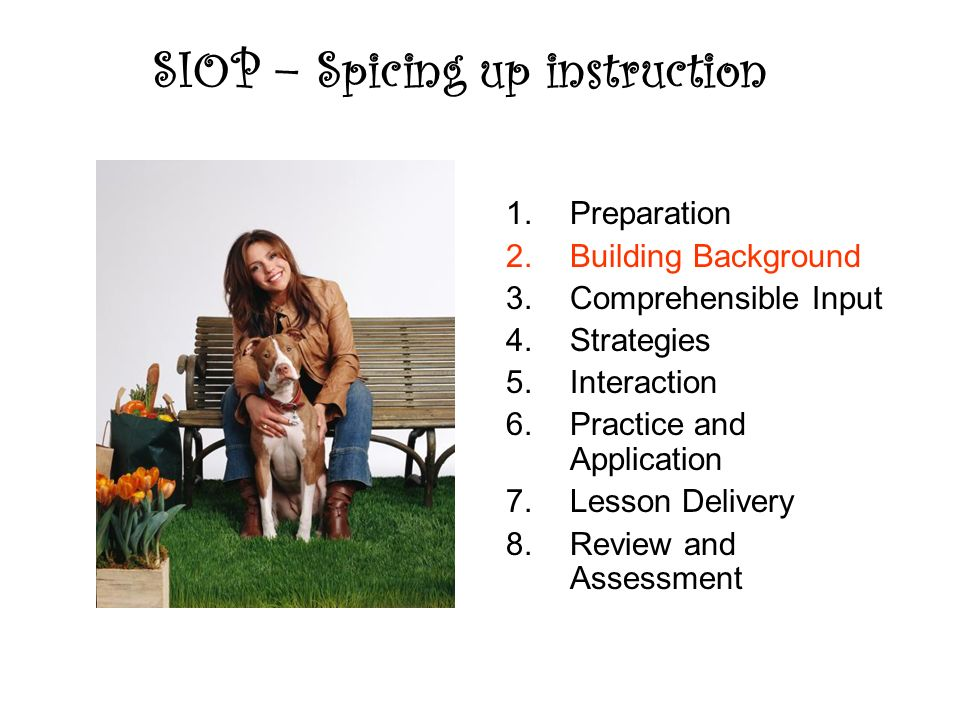 SIOP – Spicing up instruction