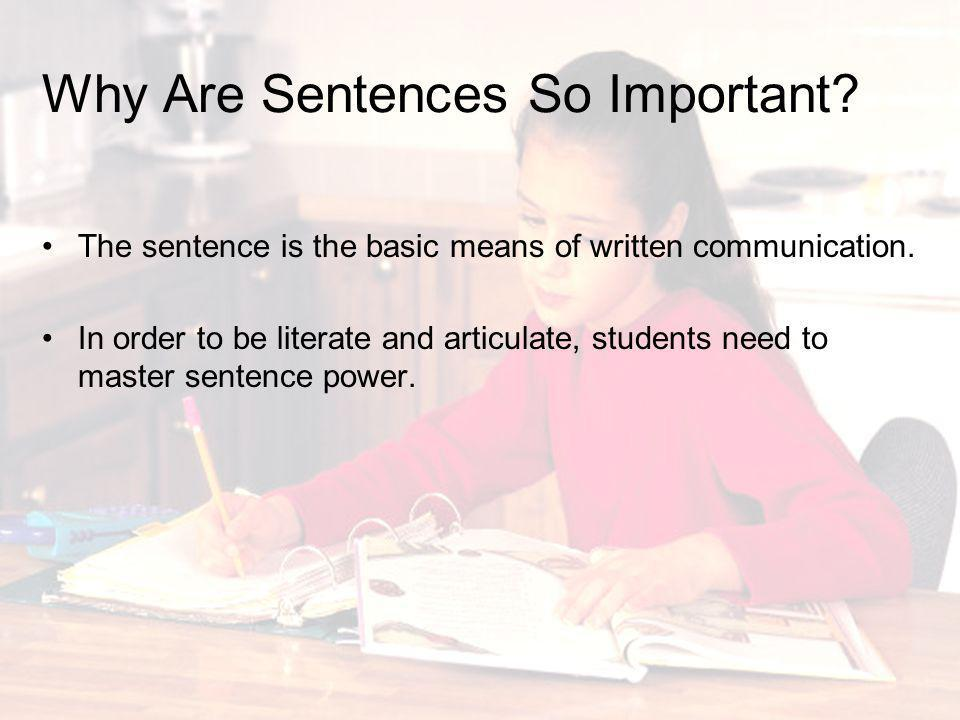 Why Are Sentences So Important