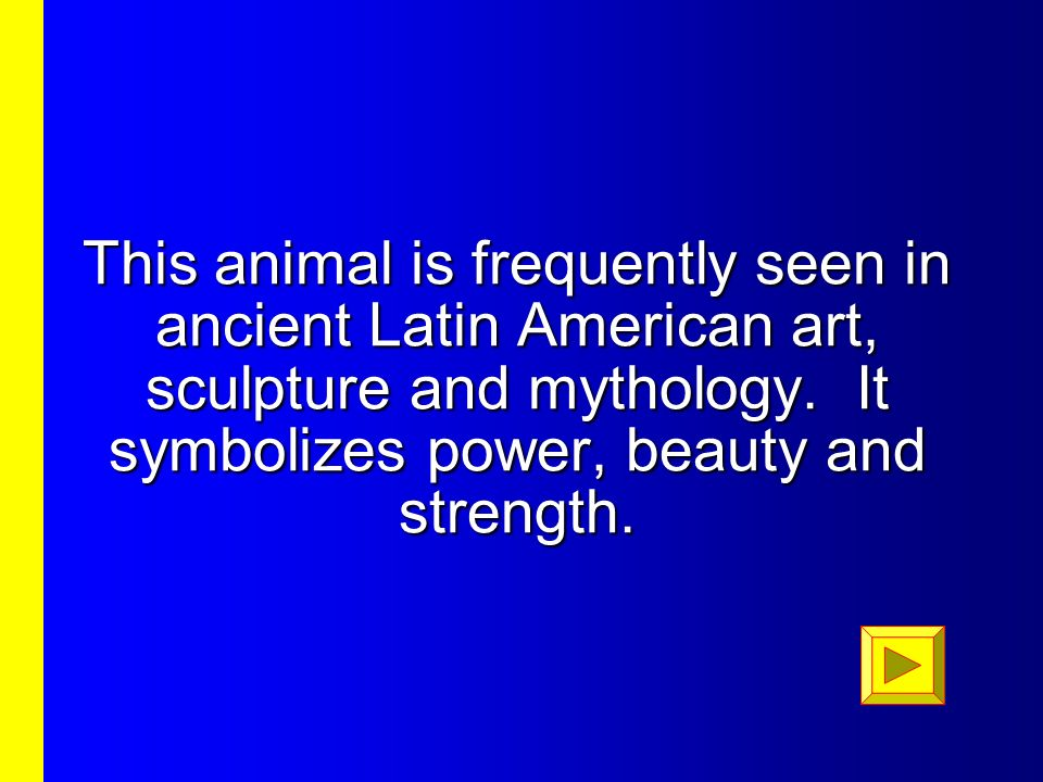 This animal is frequently seen in ancient Latin American art, sculpture and mythology.
