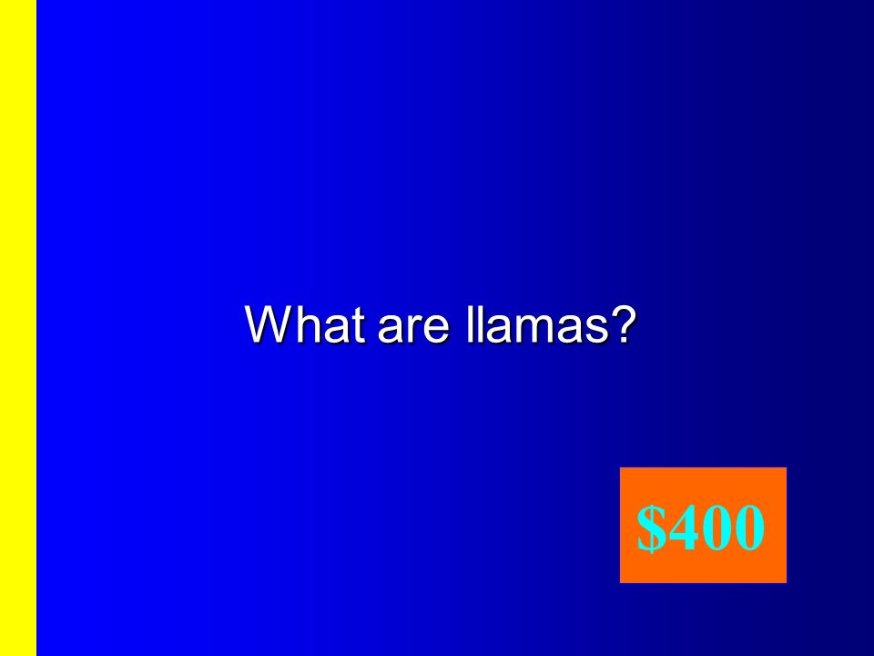 What are llamas $400