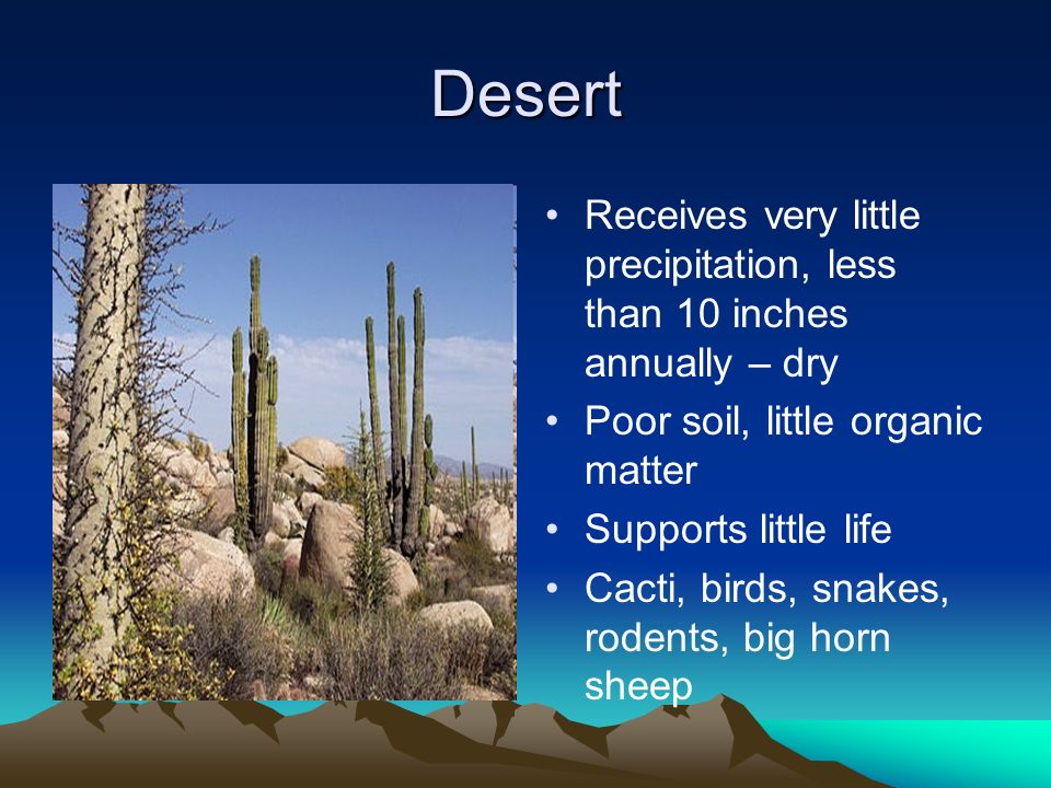 Desert Receives very little precipitation, less than 10 inches annually – dry. Poor soil, little organic matter.