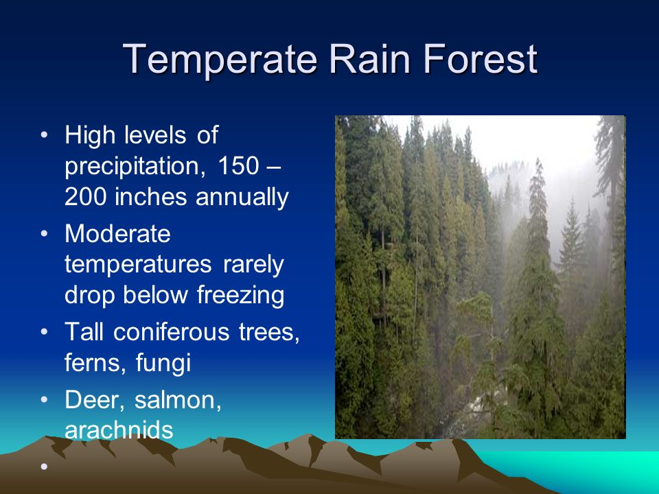 Temperate Rain Forest High levels of precipitation, 150 – 200 inches annually. Moderate temperatures rarely drop below freezing.