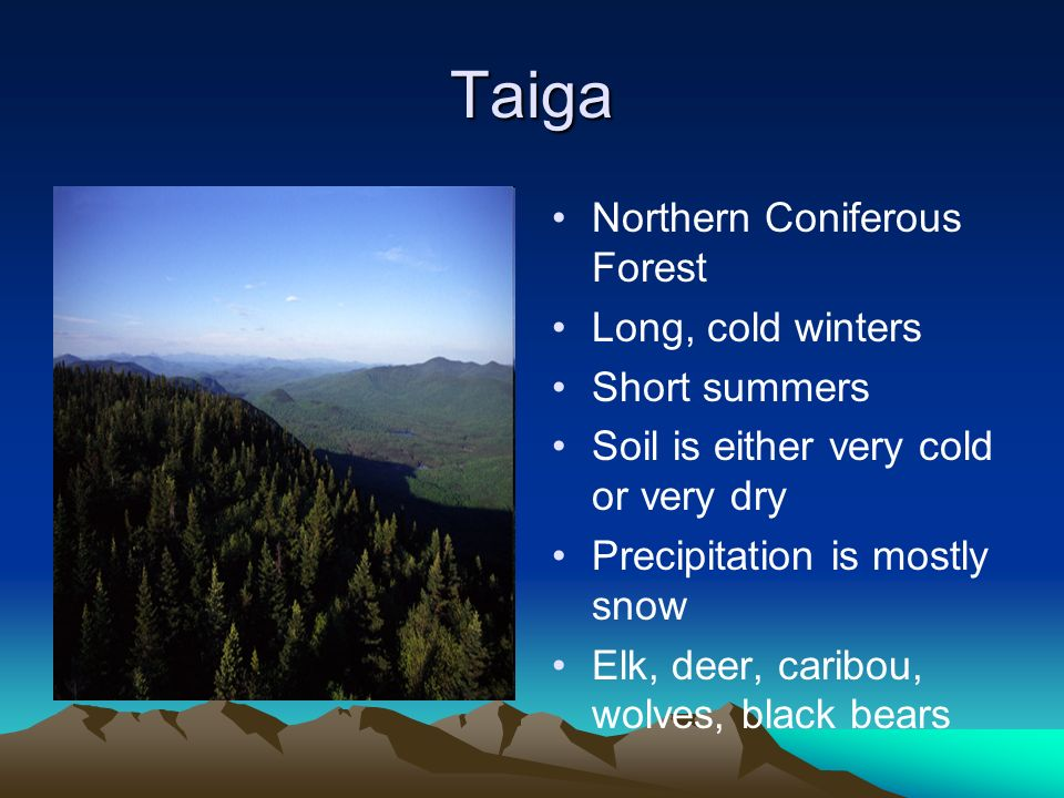 Taiga Northern Coniferous Forest Long, cold winters Short summers