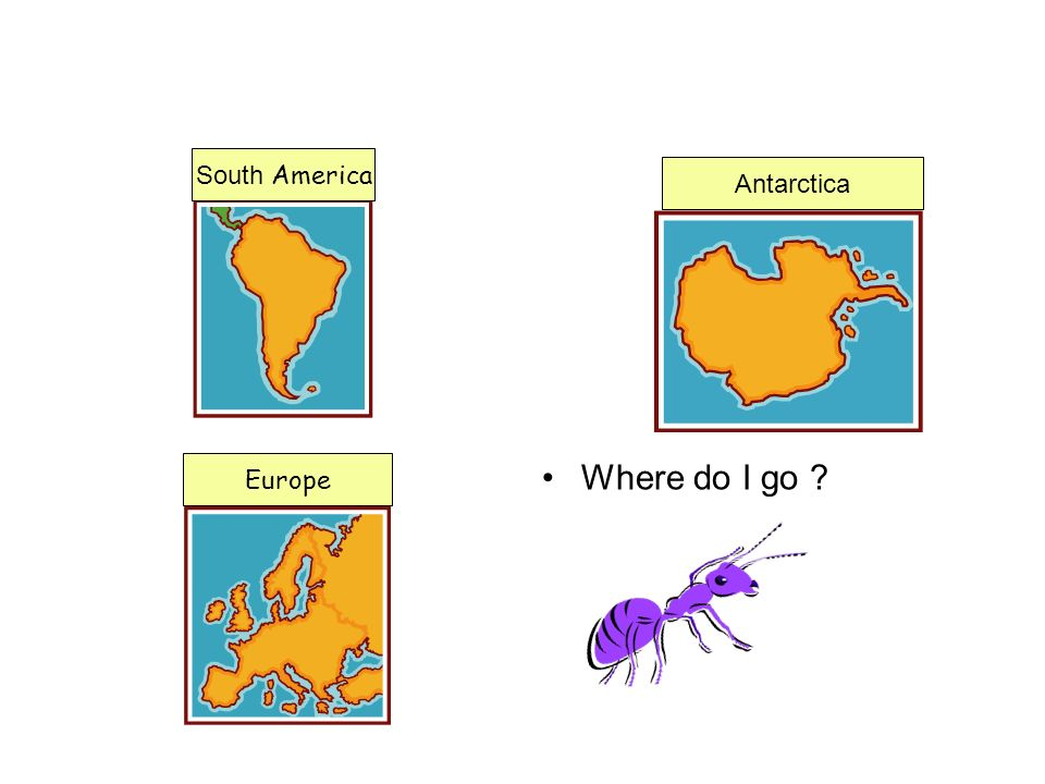 South America Antarctica Europe Where do I go