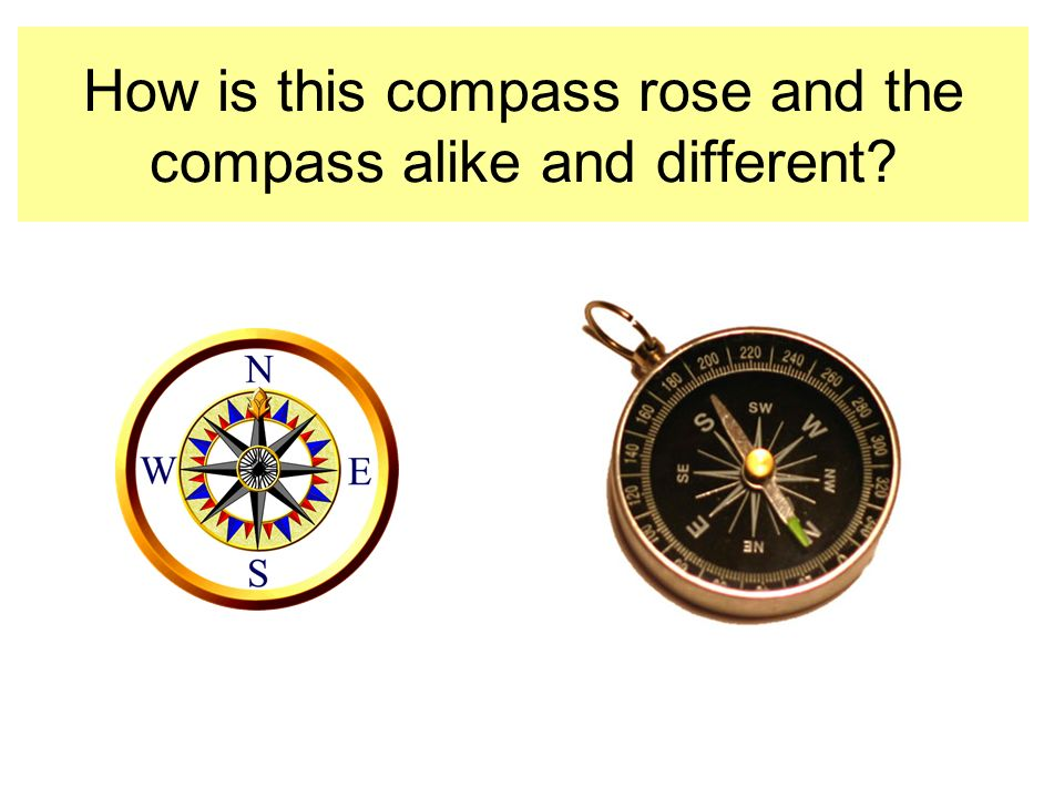 How is this compass rose and the compass alike and different