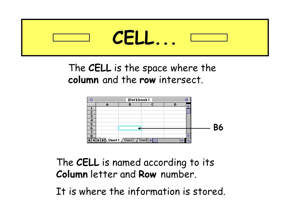 CELL... The CELL is the space where the column and the row intersect.