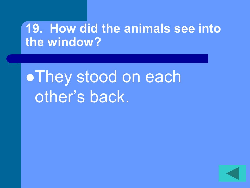 19. How did the animals see into the window