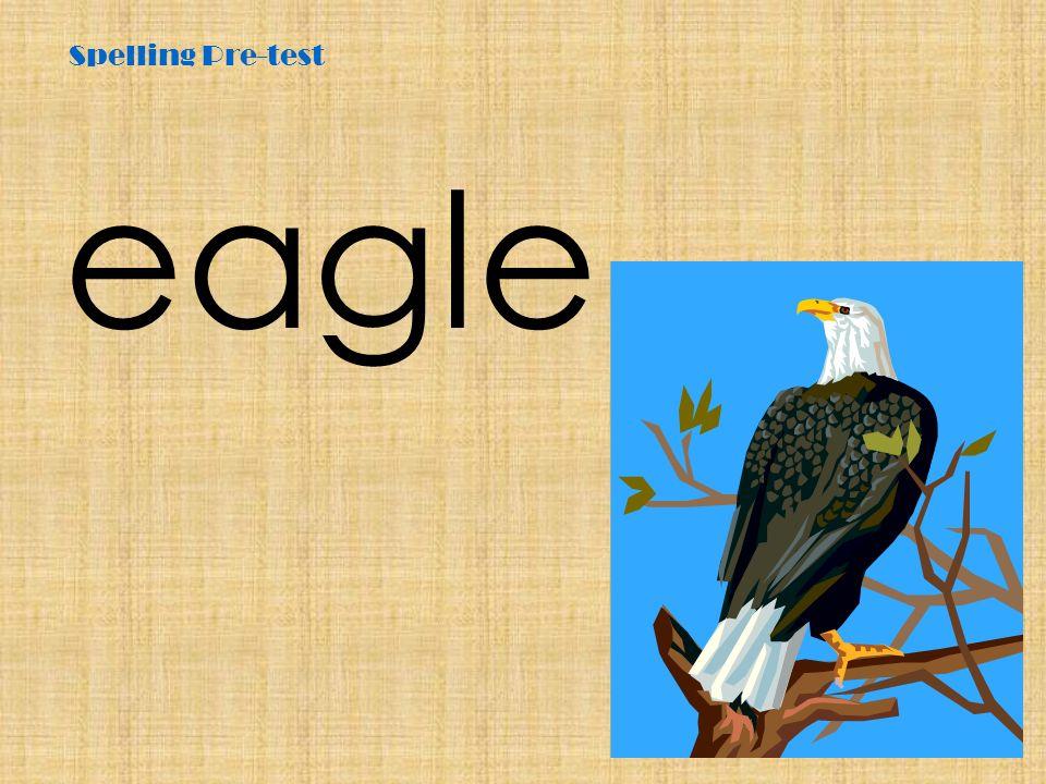Spelling Pre-test eagle