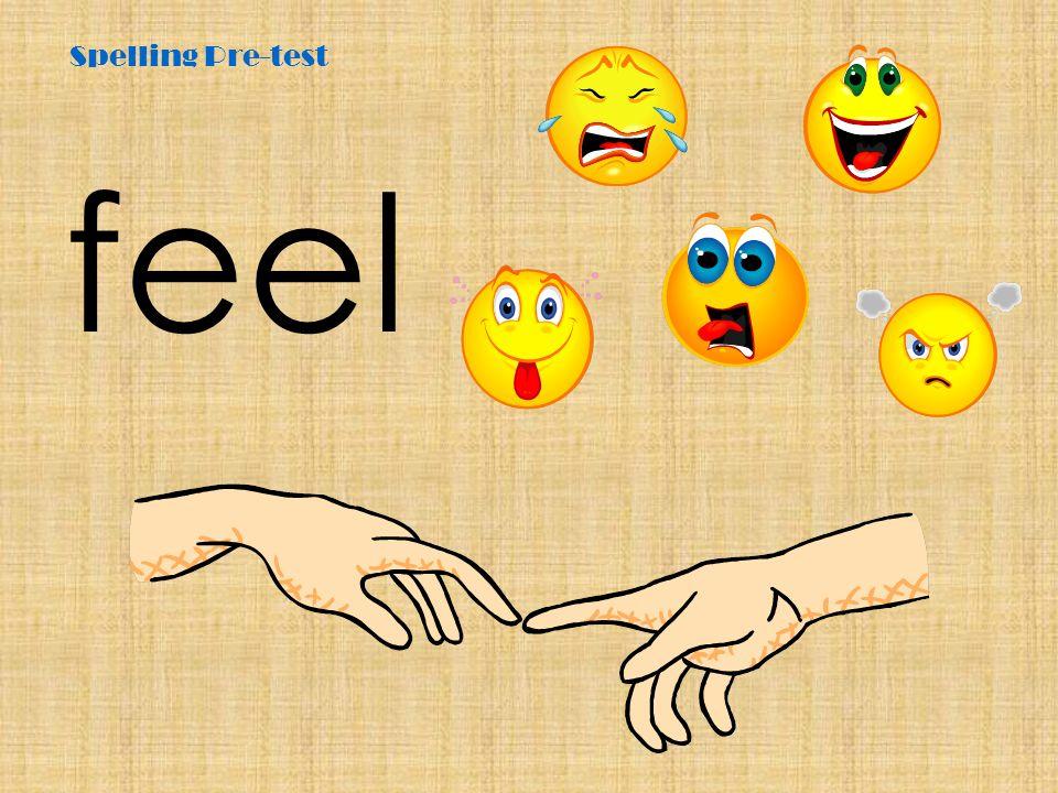 Spelling Pre-test feel