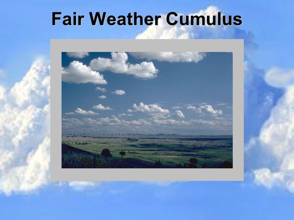 Fair Weather Cumulus