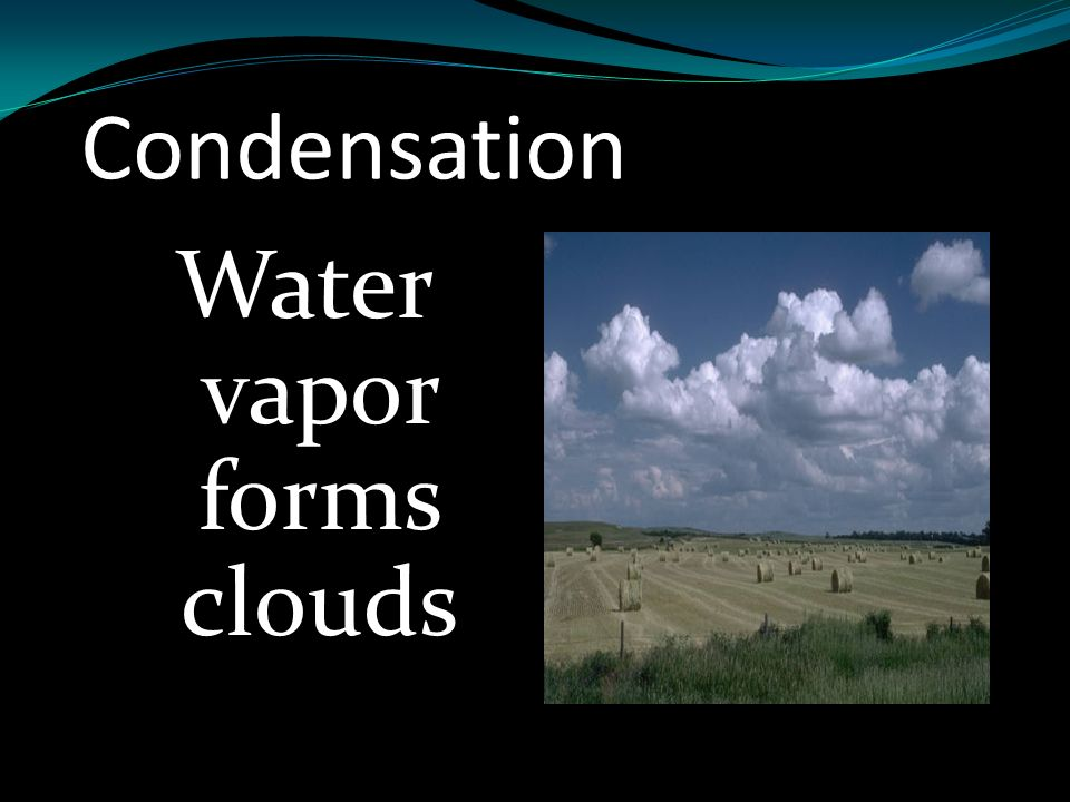 Water vapor forms clouds