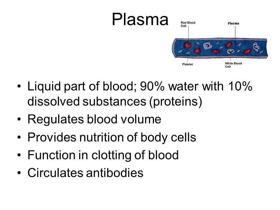 Plasma Liquid part of blood; 90% water with 10% dissolved substances (proteins) Regulates blood volume.